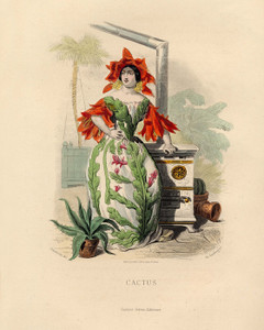 Art Prints of Cactus by J. J. Grandville