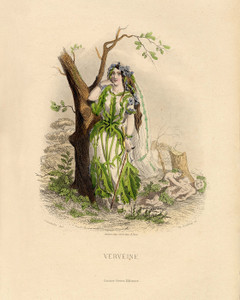 Art Prints of Verbena by J. J. Grandville
