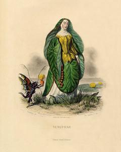 Art Prints of Water Lily by J. J. Grandville