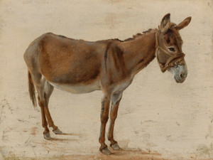 Art Prints of A Donkey by Jacques-Laurent Agasse