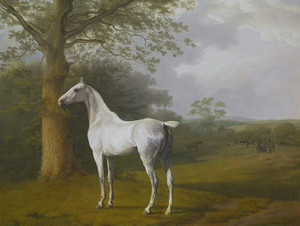 Art Prints of Lord Rivers Grey Hunter by Jacques-Laurent Agasse