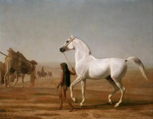 Art Prints of Wellesley Grey Arabian in the Desert by Jacques-Laurent Agasse