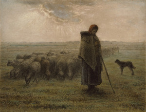 Art Prints of Shepherdess and Her Flock by Jean-Francois Millet