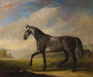 A Dappled Grey Horse in an Extensive Landscape by John Ferneley | Fine Art Print