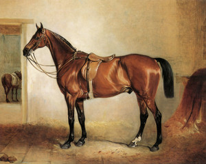 Art Prints of Bay Hunter in a Stable by John Ferneley
