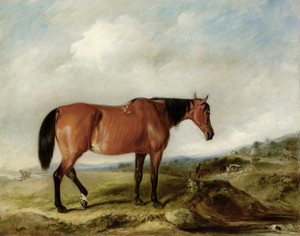 A Bay Hunter in a landscape, Cattle and a Town beyond by John Ferneley | Fine Art Print