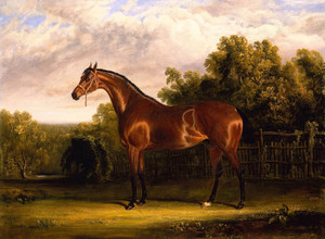 A Bay Horse in a Landscape by John Frederick Herring | Fine Art Print