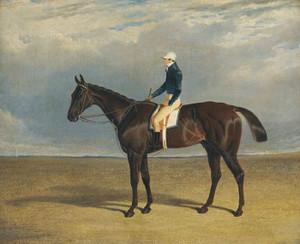 Art Prints of Margrave, a Liver Chestnut Racehorse by John Frederick Herring