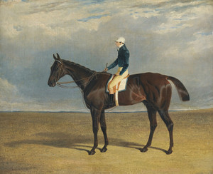 Art Prints of Margrave, a Liver Chestnut Racehorse by John Frederick Herring