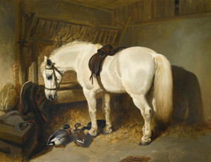 Art Prints of A Grey Pony in a Stable with Ducks by John Frederick Herring