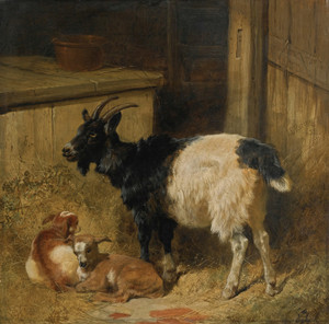 Art Prints of Goats in a Barn by John Frederick Herring