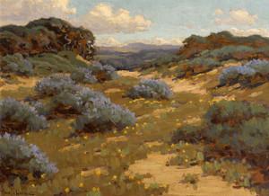 Art Prints of Bush Lupine by John Marshall Gamble