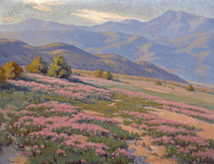 Art Prints of Wild Verbena near Palm Springs by John Marshall Gamble