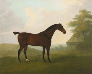 Art Prints of A Dark Bay Hunter in a Landscape by John Nost Sartorius