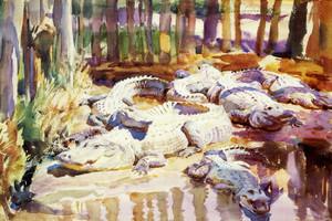 Art Prints of Muddy Alligators by John Singer Sargent