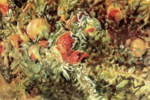 Art Prints of Pomegranates by John Singer Sargent