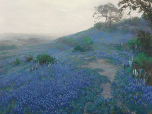 Art Prints of Bluebonnet Field, Early Morning, San Antonio Texas by Julian Onderdonk