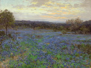 Art Prints of Field of Bluebonnets at Sunset by Julian Onderdonk