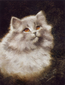 Art Prints of A White Persian Cat by Lilian Cheviot