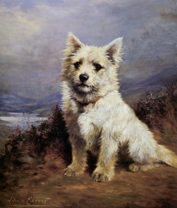 Art Prints of Seated West Highland White Terrier by Lilian Cheviot