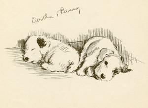 Art Prints of Bustle and Binny, Sealyhams by Lucy Dawson