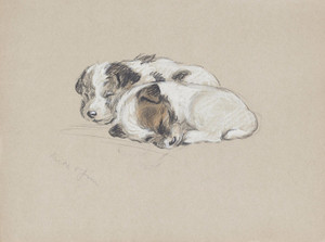 Art Prints of Jim and Mike as Puppies by Lucy Dawson