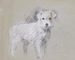 Art Prints of Patch, Daughter of Treize, Wire Haired Terrier by Lucy Dawson