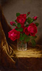 Art Prints of Jacqueminot Roses by Martin Johnson Heade