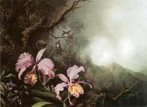 Art Prints of Two Orchids in a Mountain Landscape by Martin Johnson Heade