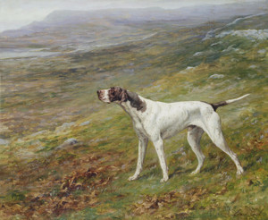 Art Prints of A Pointer on a Moor by Maud Earl