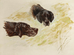 Art Prints of Lorne and Kate, Black Pointers by Maud Earl