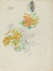 Art Prints of Studies of Trees by Pierre-Auguste Renoir