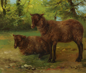 Art Prints of A Pair of Black Sheep by Rosa Bonheur