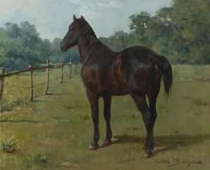 Art Prints of A Bay Horse in a Paddock by Rosa Bonheur