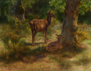 Art Prints of Deer and Fawn in a Wood by Rosa Bonheur