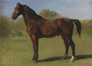 Art Prints of Study of a Brown Bay Horse by Rosa Bonheur