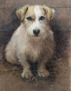 Art Prints of Portrait of a Terrier by Samuel Fulton