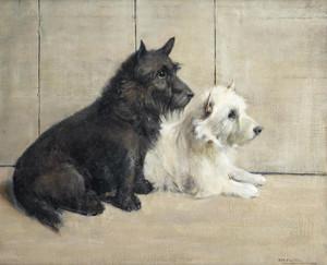 Art Prints of Scottie and Westie by Samuel Fulton