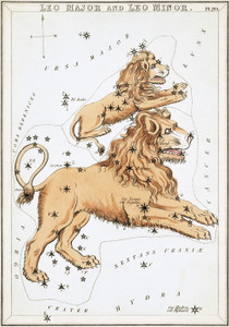 Art Prints of Leo Major and Leo Minor, Plate 20, View of the Heavens by Sidney Hall