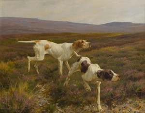 Art Prints of English Pointers in a Landscape by Thomas Blinks