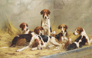 Art Prints of Hounds in a Kennel by Thomas Blinks