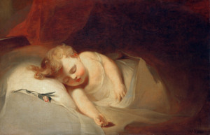 Art Prints of Rosebud by Thomas Sully