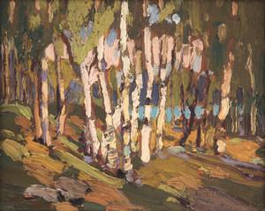 Art Prints of White Birches, Fall by Tom Thomson