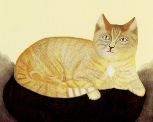 Art Prints of Cat on a Black Pillow by an Unknown Artist