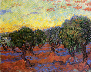 Art Prints of Olive Grove, Orange Sky, 1889 by Vincent Van Gogh