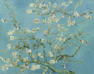 Art Prints of Almond Blossom by Vincent Van Gogh