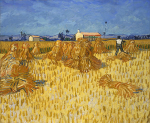 Art Prints of Corn Harvest in Provence by Vincent Van Gogh