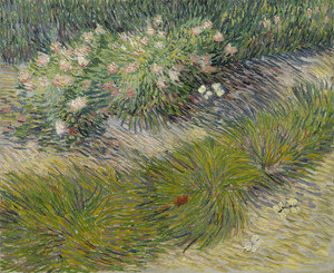 Art Prints of Grass and Butterflies by Vincent Van Gogh