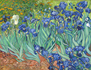 Art Prints of Irises by Vincent Van Gogh
