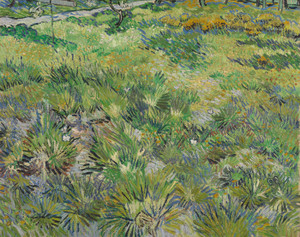 Art Prints of Long Grass with Butterflies by Vincent Van Gogh